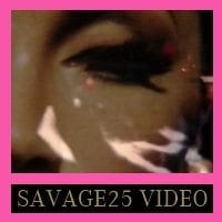 Eurythmics: Savage25: Video – Put The Blame On Me Promotional Video From The Savage Video Album