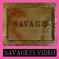 Eurythmics: Savage25: Video – Savage The Whole Video Album