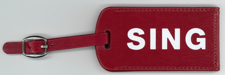 Memorabilia Of The Week : Annie Lennox Sing leather luggage tag