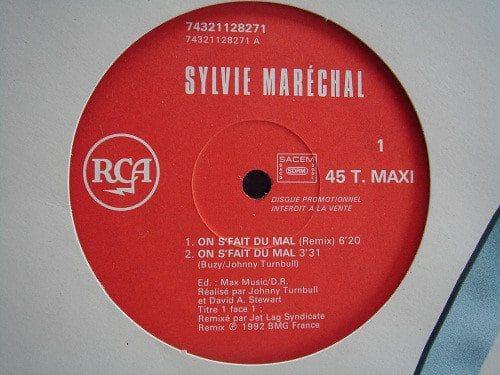 "5069 - Dave Stewart And Sylvie Marechal - On S'Fait Du Mal - France - Promo 12"" Single - 74321 128271"